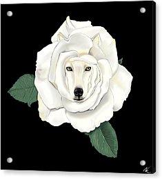 Canis Rosa Acrylic Print