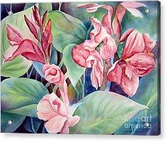 Canna Acrylic Print by Deborah Ronglien
