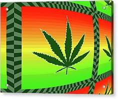 Acrylic Print featuring the mixed media Cannabis  by Dan Sproul