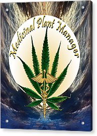 Cannabis Medicinal Plant Acrylic Print