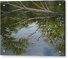 Canoe Painting 6 Acrylic Print