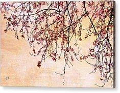 Canopy Acrylic Print by Rebecca Cozart