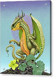 Acrylic Print featuring the digital art Cantaloupe Dragon by Stanley Morrison