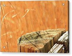 Cantigny Fence Post Acrylic Print by Joni Eskridge