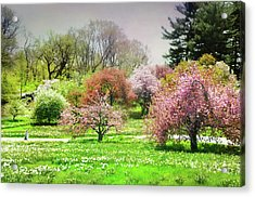 Acrylic Print featuring the photograph Garden Canvas  by Diana Angstadt