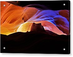 Acrylic Print featuring the photograph Canyon Antelope by Evgeny Vasenev
