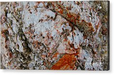 Canyon Blend Acrylic Print by PJ  Cloud