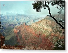 Canyon Captivation Acrylic Print