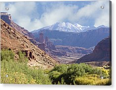 Canyon In Colorado Acrylic Print by Judy Deist