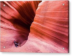 Acrylic Print featuring the photograph Canyon Ladder by Stephen Holst