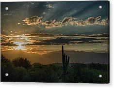 Acrylic Print featuring the photograph Canyon Ranch Dawn by Dan McManus