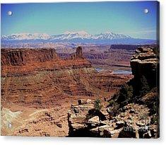 Canyonlands 5 Acrylic Print by Marty Koch