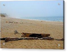 Acrylic Print featuring the photograph Cape Cod by AnnaJanessa PhotoArt