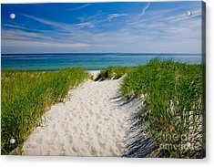 Cape Cod Bay Acrylic Print by Susan Cole Kelly