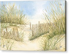 Cape Cod Dunes And Fence Acrylic Print by Virginia McLaren