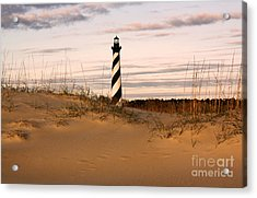 Cape Hatteras Lighthouse Acrylic Print by Tony Cooper