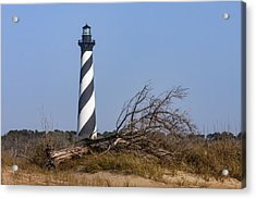 Cape Hatteras Lighthouse With Driftwood Acrylic Print
