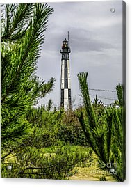 Cape Henry Light From The Dune Acrylic Print