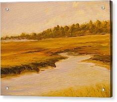 Cape Marsh Acrylic Print by Paul Galante