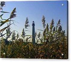 Cape May Light Autumn Acrylic Print by Kevin  Sherf