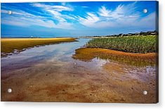 Acrylic Print featuring the photograph Cape Perspective by Kendall McKernon