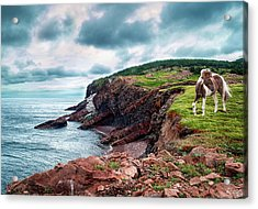 Cape St. Lawrence Acrylic Print