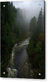 Acrylic Print featuring the photograph Capilano Canyon by Steven Richman