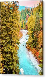 Capilano River, Vancouver Bc, Canada Acrylic Print