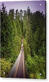 Capilano Suspension Bridge, North Vancouver, Canada Acrylic Print by Art Spectrum