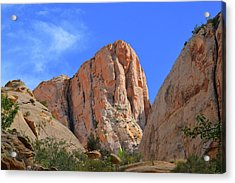 Capitol Gorge, Capitol Reef National Park Acrylic Print