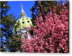 Capitol In Bloom Acrylic Print