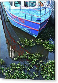 Cap'n Tee Henderson Swamp Acrylic Print