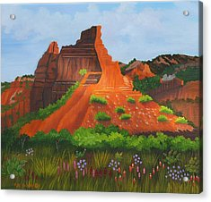 Caprock Canyon Texas Acrylic Print by Ruth  Housley