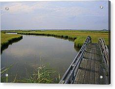 Captree Wetlands Foot Bridge Acrylic Print