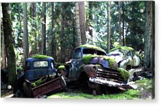 Car Lot In The Forest Acrylic Print by Diane Smith