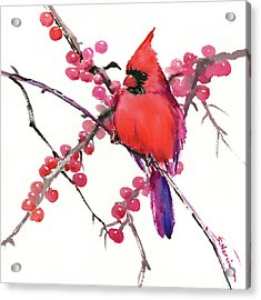 Cardinal And Berries Acrylic Print by Suren Nersisyan