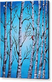 Cardinal And Birch Trees Acrylic Print by Barbara Griffin