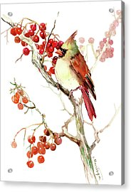 Cardinal Bird And Berries Acrylic Print by Suren Nersisyan