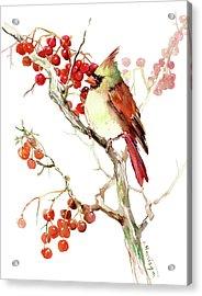 Cardinal Bird And Berries Acrylic Print