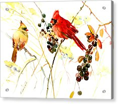 Cardinal Birds And Berries Acrylic Print by Suren Nersisyan