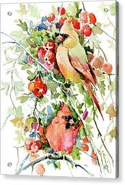 Cardinal Birds And Hawthorn Acrylic Print