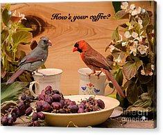 Cardinal Coffee Acrylic Print