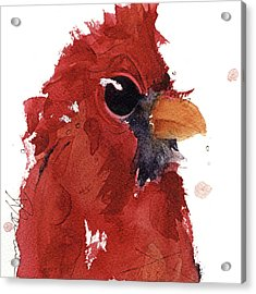 Acrylic Print featuring the painting Cardinal by Dawn Derman
