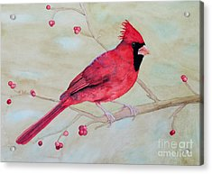 Acrylic Print featuring the painting Cardinal II by Laurel Best
