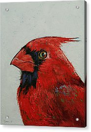 Cardinal Acrylic Print by Michael Creese