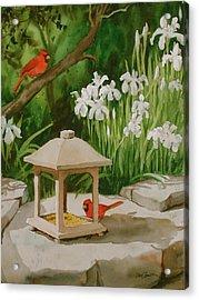 Cardinals Feeding Acrylic Print by Faye Ziegler