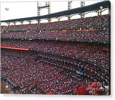 Cardinals Red Acrylic Print