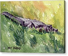 Acrylic Print featuring the painting Carefree Carnivore by Kris Parins