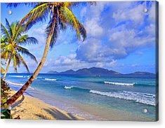 Caribbean Paradise Acrylic Print by Scott Mahon