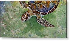 Caribbean Sea Turtle Acrylic Print by Michael Creese